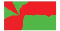 Logo DMV